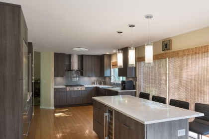 Kitchen Cabinets, Contemporary Style